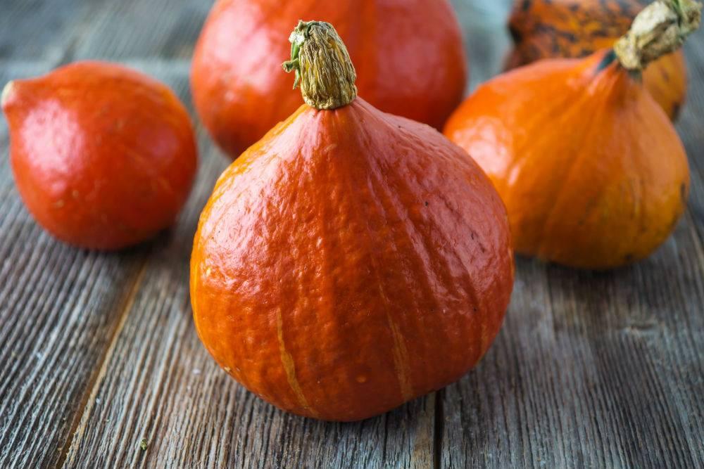 Zapraszamy na październikowy wykład z diety połączony z gotowaniem.