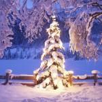 Miłych i zdrowych Świąt!